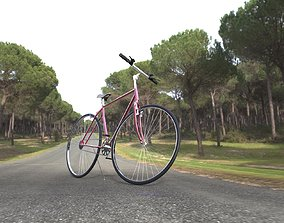 3D asset VR / AR ready BICYCLE MODEL