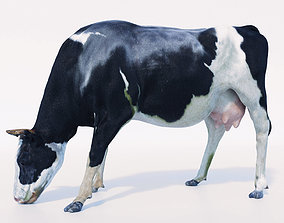 3D model Cow Hair and Fur