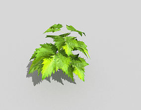 low poly ground plant 3D asset