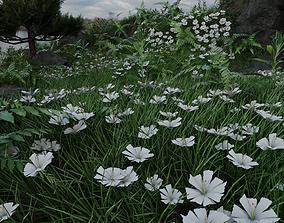 3D model Stylized White Flower