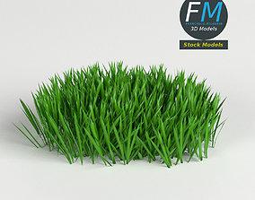 Grass Weed module 1 3D