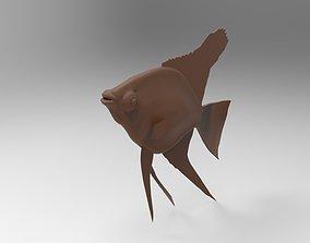 3D print model fish mod3