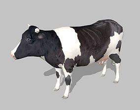3D asset cow holstein