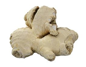 3D model Ginger Root Scan