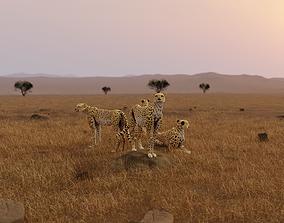 3D model low-poly Cheetah