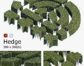 3D Hedge 300x300