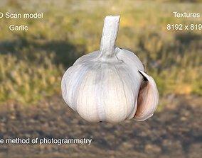 3D Model Garlic game-ready