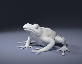 Rana Temporaria Frog for 3D printing