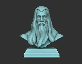Gandalf Bust - Ian McKellen - Lord of 3D printable model 3
