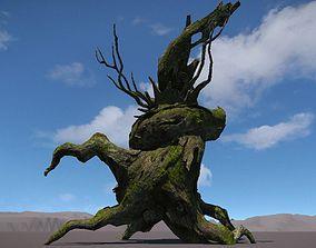 Ancient Tree V11 3D model