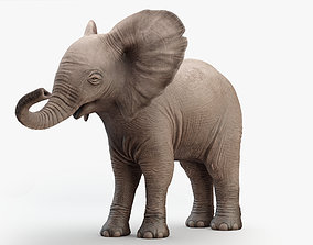 3D asset game-ready Animated Elephant baby 8K