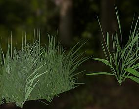 3D Free Basic Grass and Shrubs