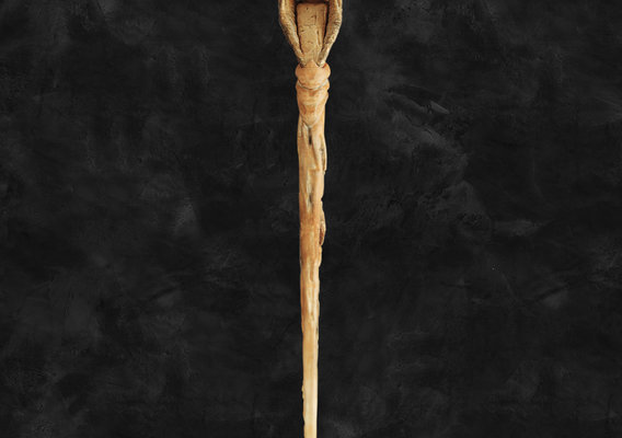 Raven Skull Wand - Patronus - Harry Potter Spirit Animal