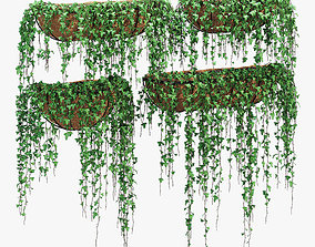 Wire wall ivy 3D