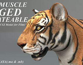 3D Muscle Rigged Tiger