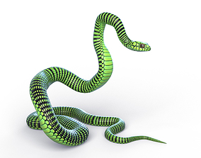 Rigged Boomslang Snake 3D model