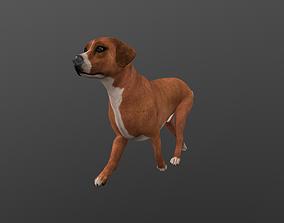 ANML-007 Dog 3D model