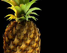 Pineapple Detailed Model
