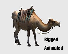camel luggage animation 3D model