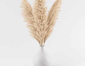 pampas in vase 02 3D