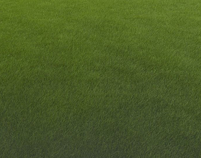 3D model VR / AR ready Grass