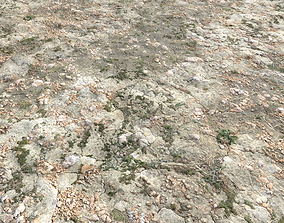 3D Ground terrain forest tundra PBR pack 3