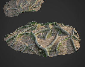 3d scanned nature forest roots 010 game-ready