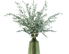 Eucalyptus branches in a green vase 3D
