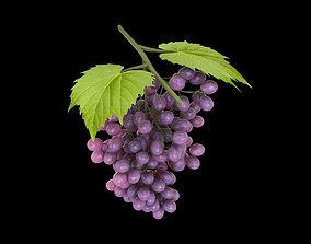 Grapes photo realistic 3D asset