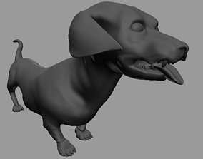 dachshund 3D
