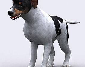 animated 3DRT - Dog
