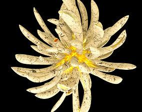3D model Golden Lotus