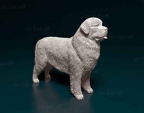 3D print model Newfoundland