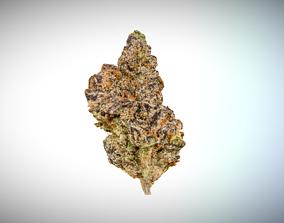 Marijuana Flower 2 3D model