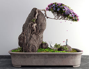 landscape bonsai plant 3D model