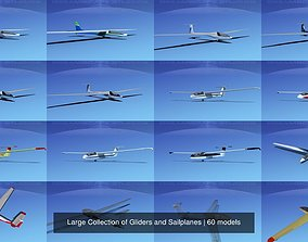 3D model Large Collection of 60 Gliders and Sailplanes