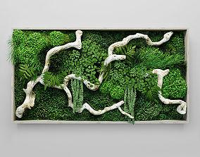 3D model Moss fern and snag fytowall