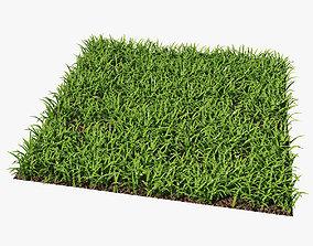 Grass 3D model turf
