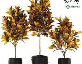 3D model Plants collection 120 GrowFx