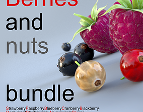 3D model Berries and nuts bundle