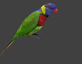 lowpoly bird 3D asset VR / AR ready animals