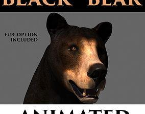 animated 3D animated Black Bear