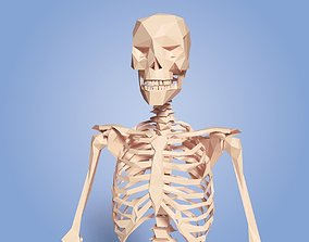 Cartoon Skeleton Low Poly 3D asset