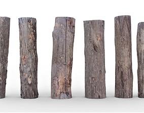 Wood Pack V2 3D asset
