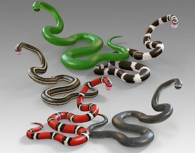 3D model Snakes Vol 1 Rigged