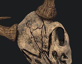3D model Ram Skull Mask Decoration