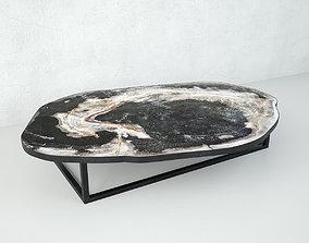 3D model Petrified Wood Slice Coffee Table 1