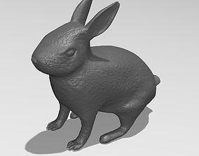 wildlife Printable Rabbit