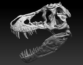 T Rex Skull 3D model