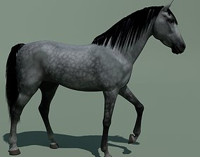 3D model Animated Horse 10 colours